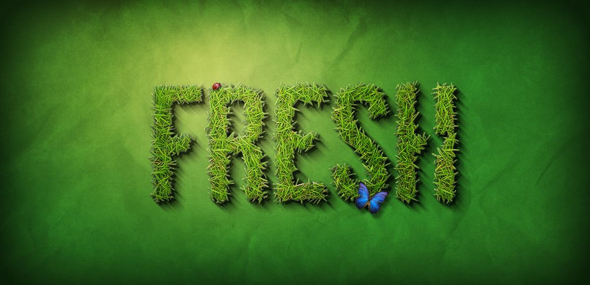 fresh-grass-image